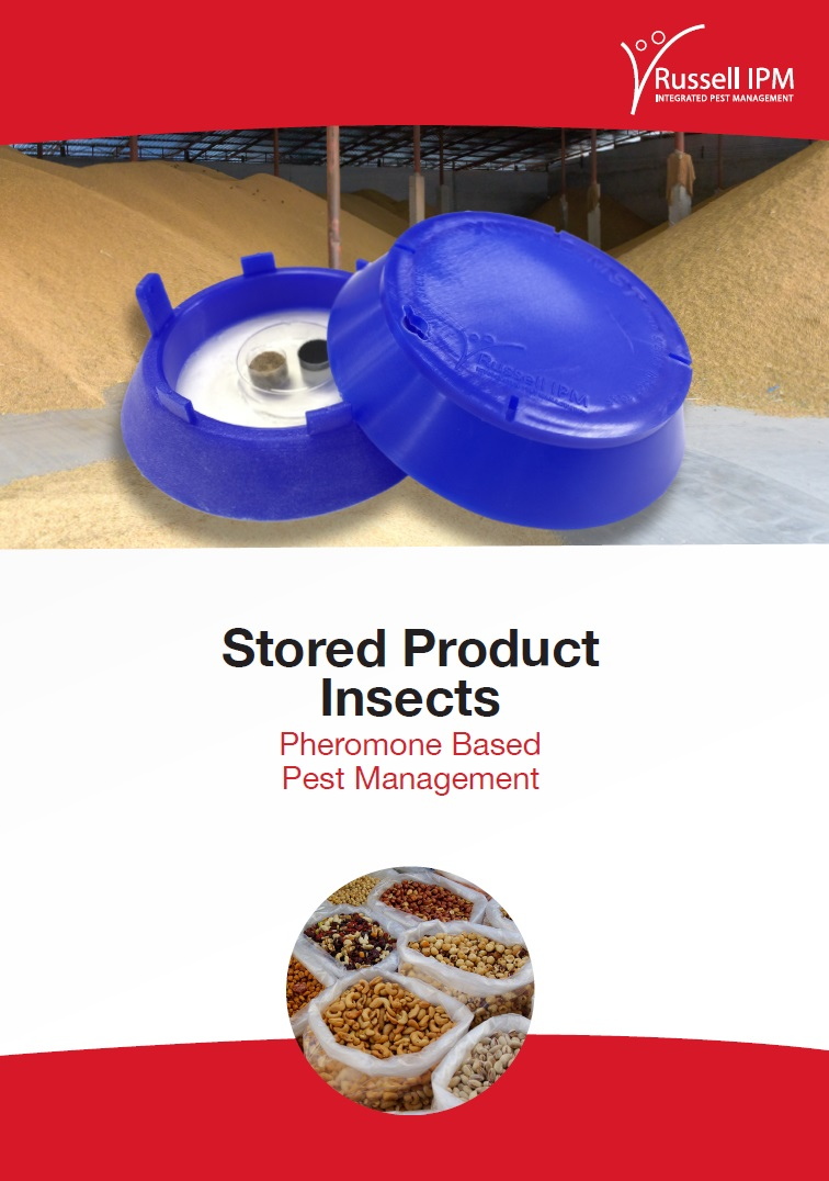 Stored Product Insect | Brochure